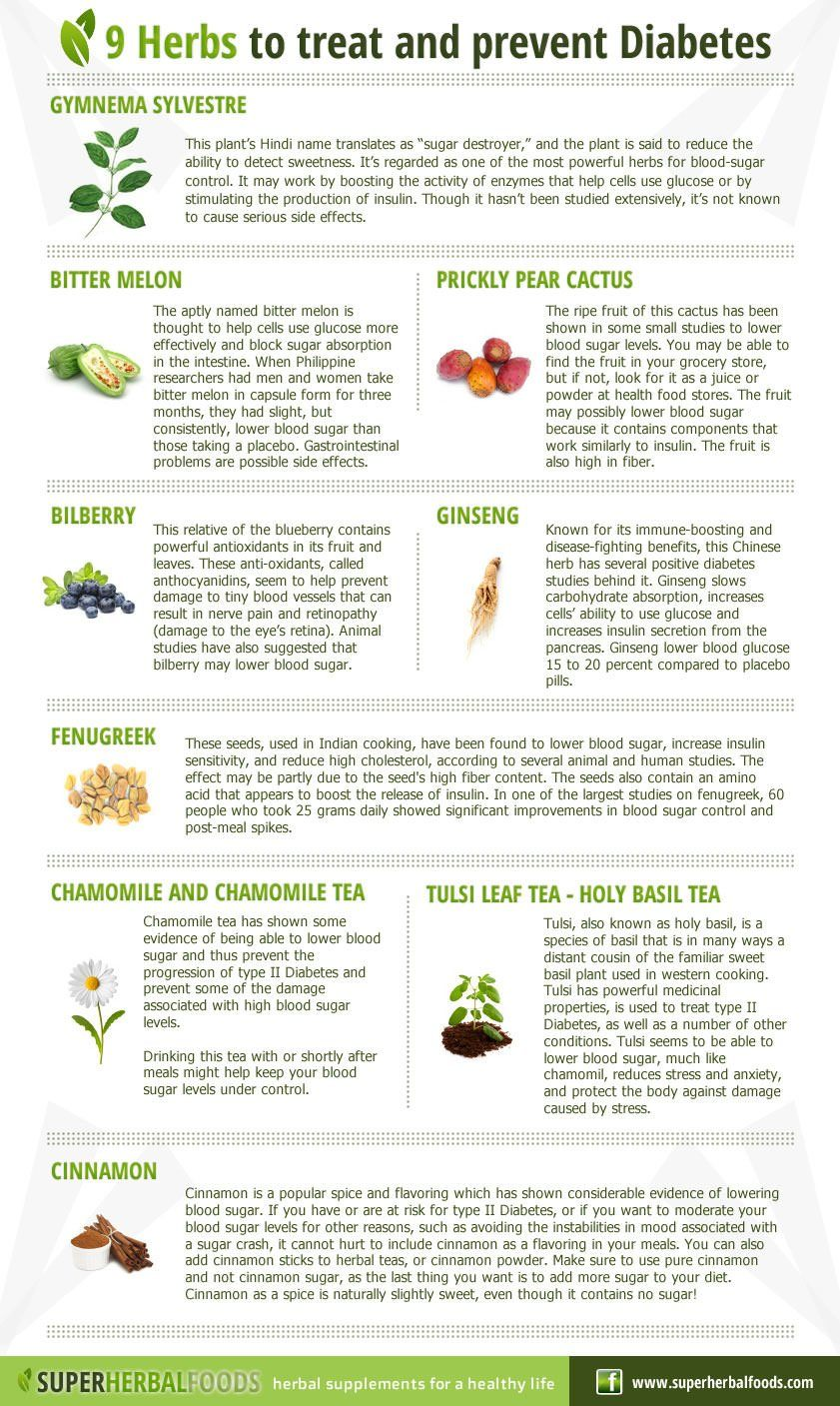 9 Herbs To Treat And Prevent Diabetes Infographic
