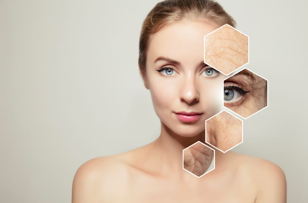 skin wrinkles anti ageing supplement